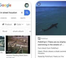 Google Adds 'Fact Check' Label to Image Search Results