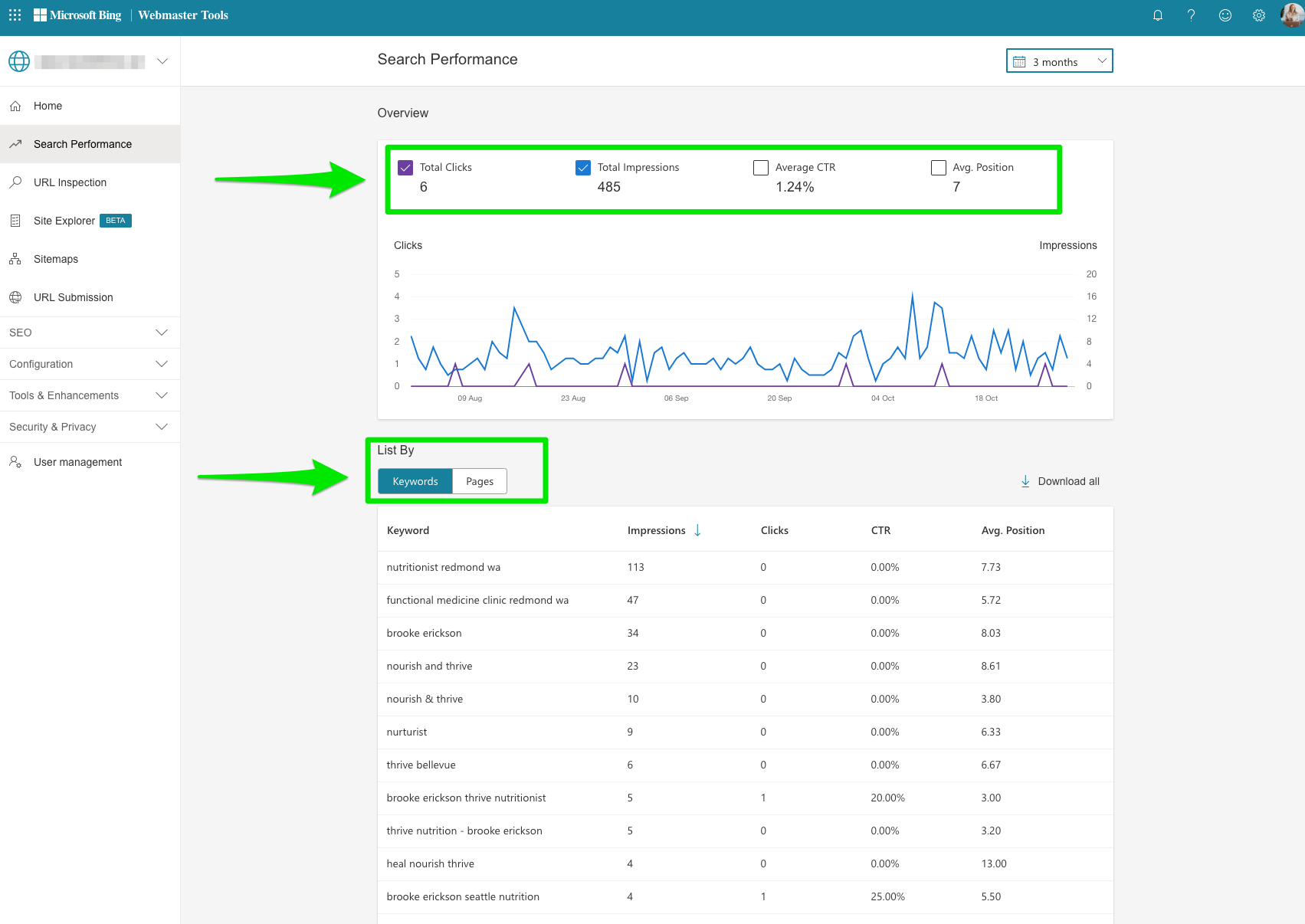 Webmaster Tools Search Performance