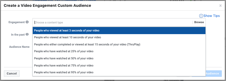 Facebook Ads Video Audience Creation