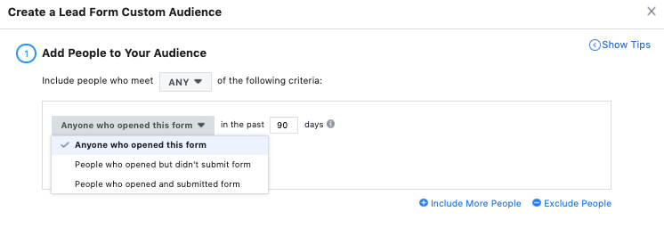 Facebook Ads Lead Gen Form Audiences