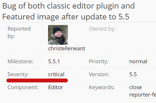 Screenshot of a critical WordPress 5.5 bug report