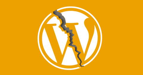 Image of the WordPress logo with a crack in it