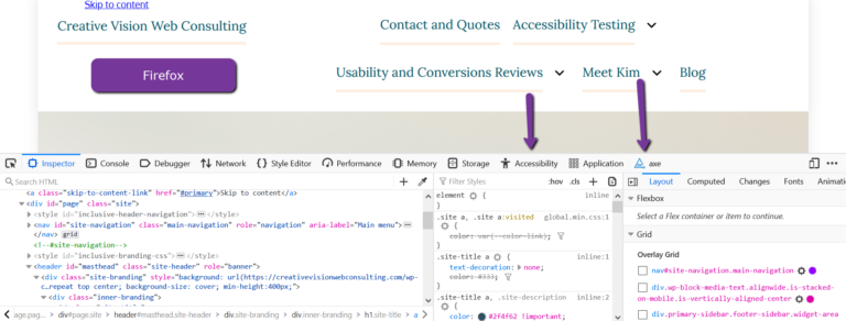 Web developer example with accessibility section from Firefox.