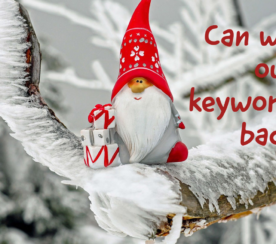All I Want for Christmas Is My Keyword Data Back
