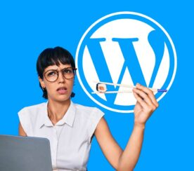 WordPress 5.6: The Good, the Meh and the Ugly