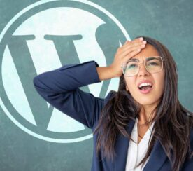 WordPress All in One SEO Auto Updates Cause Backlash
