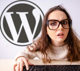 WordPress Now Offers Website Development