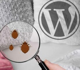 WordPress 5.6.1 Introduces Bug Into Post and Page Windows