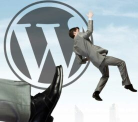 WordPress Boots Pirated Themes and Plugins