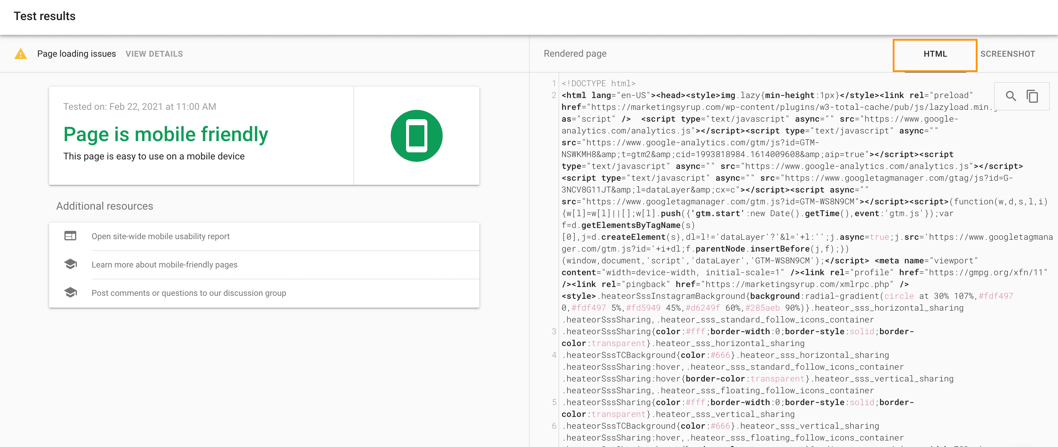 Google's HTML check for the mobile-friendly test tool