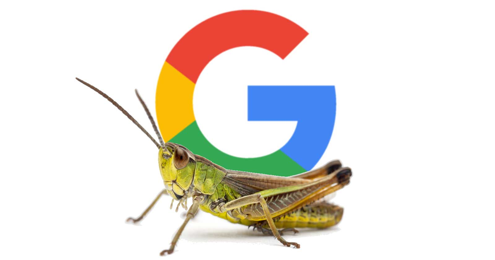 Google: Embedded Links in Featured Snippets is a Bug