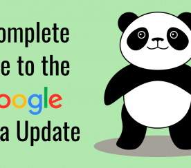 A Complete Guide to the Google Panda Update: 2011-21