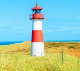 PageSpeed Insights Updates to Lighthouse 8.4 – Helps Improve LCP